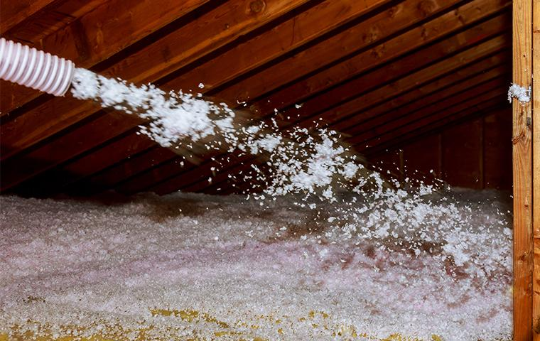 tap insulation being blown into the attic of a california home