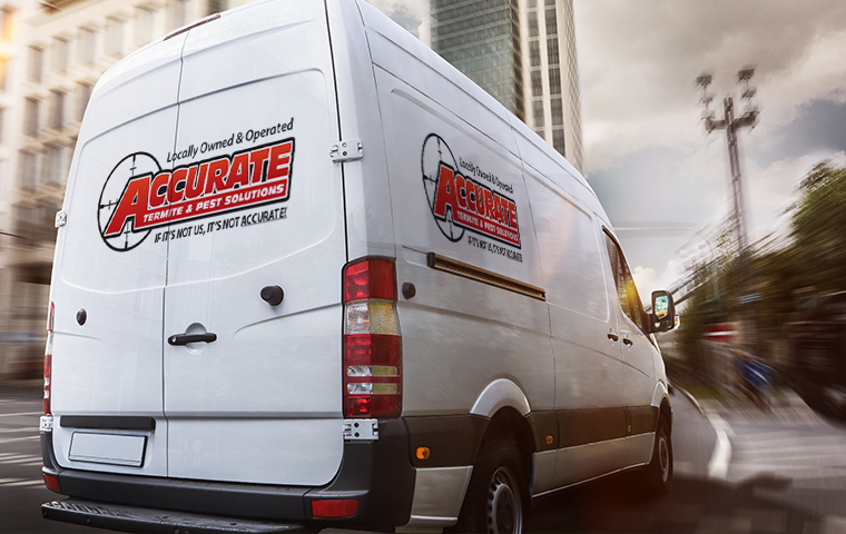 an accurate termite and pest service van driving in eureka california
