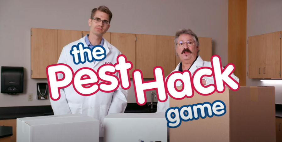 key frame from pest hacks video