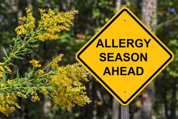 yellow road sign that says Allergy Season Ahead