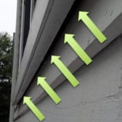 window frames are common entry points for pests