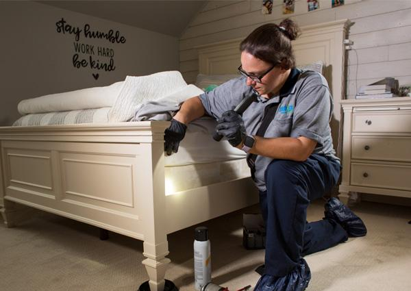 moyer pest control pro inspecting souderton home for bed bugs
