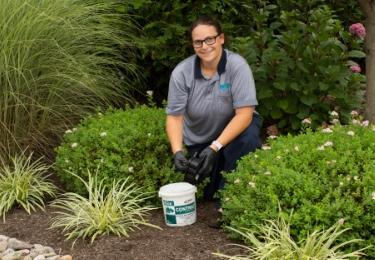 souderton pest control pro performing exterior guard service