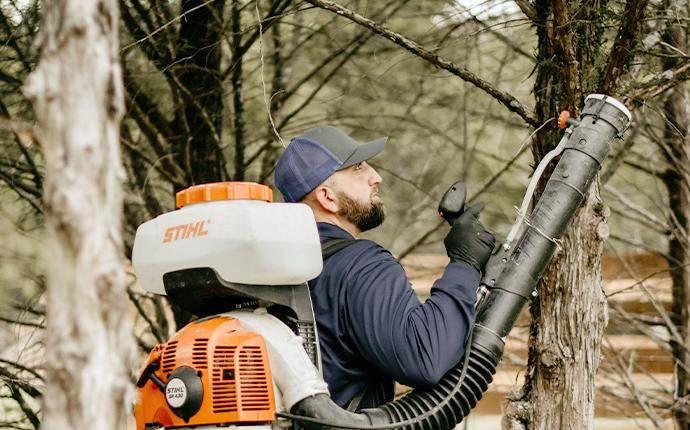 technician using mosquito fogger