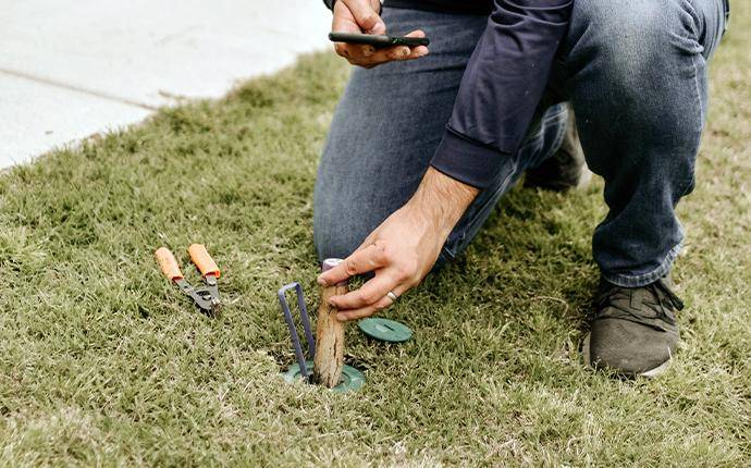 technician placing sentricon in ground