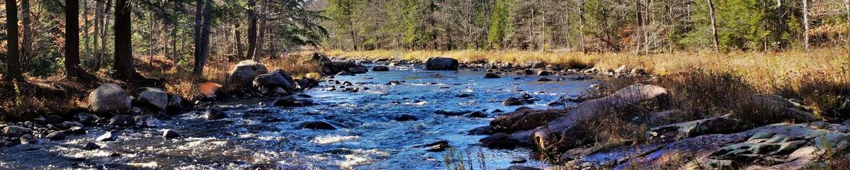 Sun shines on a section of river with rapids