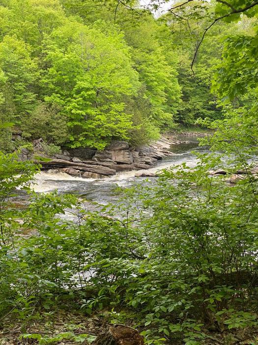 Harts Falls (Credit: Julia Morse)