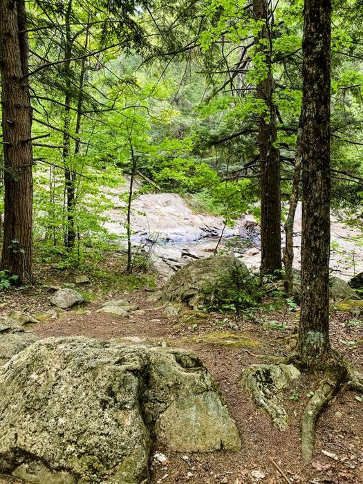 Harper's Falls (Credit: Julia Morse)