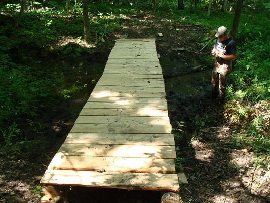 New footbridge on the Chippewa Bay Nature Trail (Credit: Thousand Islands Land Trust)