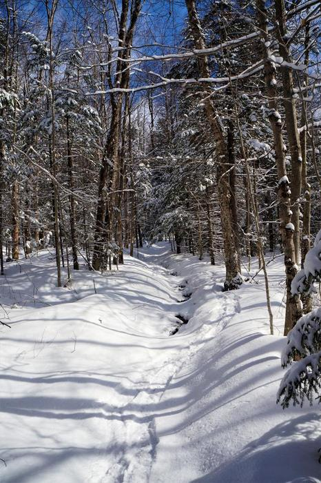 (Credit: WM Hill - Hiking the trail to yesterday)