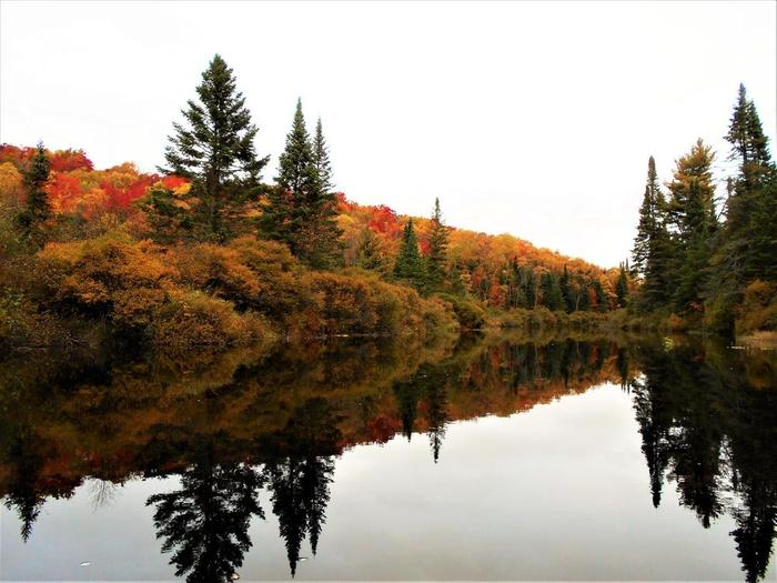 Autumn on the Oswegatchie (Credit: Wm Hill- Hiking the trail to yesterday)