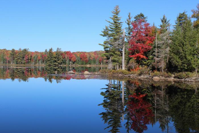 Cranberry Lake near the Ranger School (Credit: Clifton-Fine ADK)