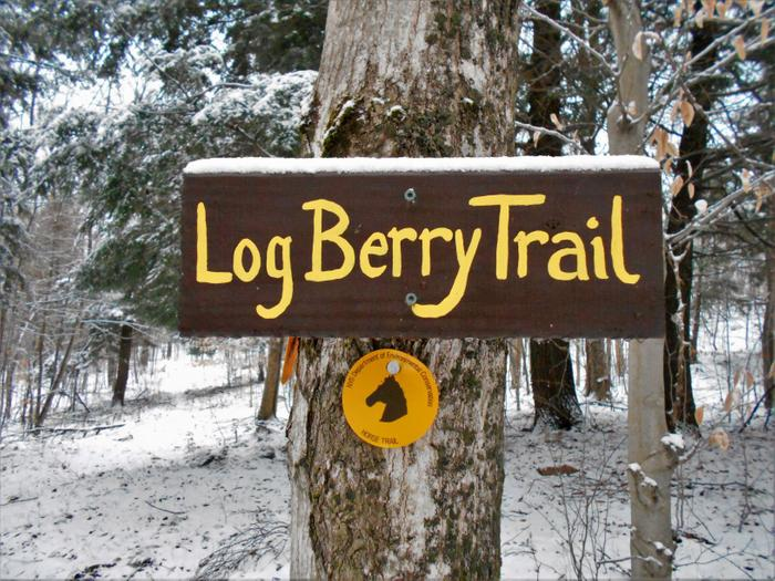 The Log Berry Trail branches off from the Chisholm Trail. (Credit: https://hikingthetrailtoyesterday.wordpress.com/)