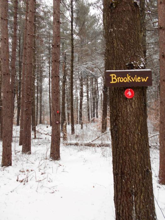 The start of the Brookview Trail. (Credit: https://hikingthetrailtoyesterday.wordpress.com/)