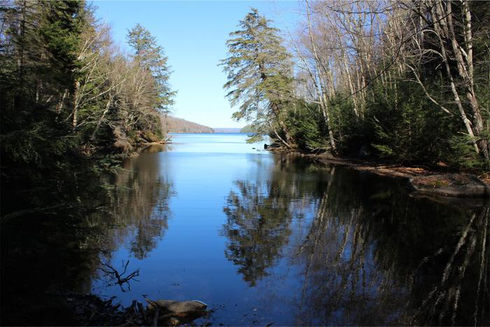 West Flow of Cranberry Lake (Credit: Clifton-Fine ADK)