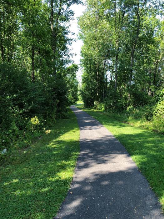 On the Whalen Park Trail
