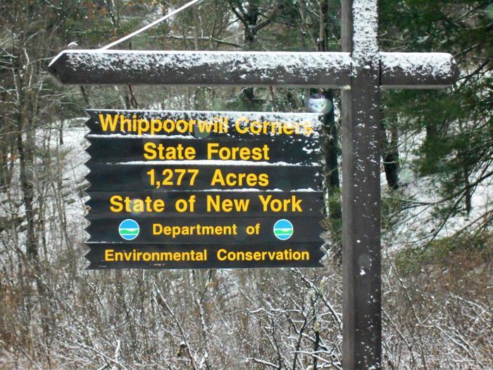 Whippoorwill State Forest (Credit: https://hikingthetrailtoyesterday.wordpress.com/)