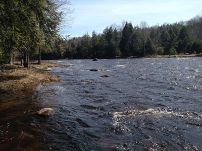 West Branch of the St. Regis River (Credit: Nature Up North)