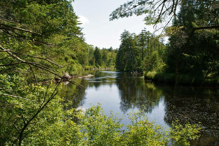 The Oswegatchie river along the trail (Credit: Credit: Wm Hill- Hiking the trail to yesterday)