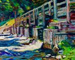 Michael Vermette: 50 Plus 1, The Allagash Wilderness Waterway
