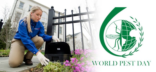 world pest day logo with american pest employee setting a rodent bait box