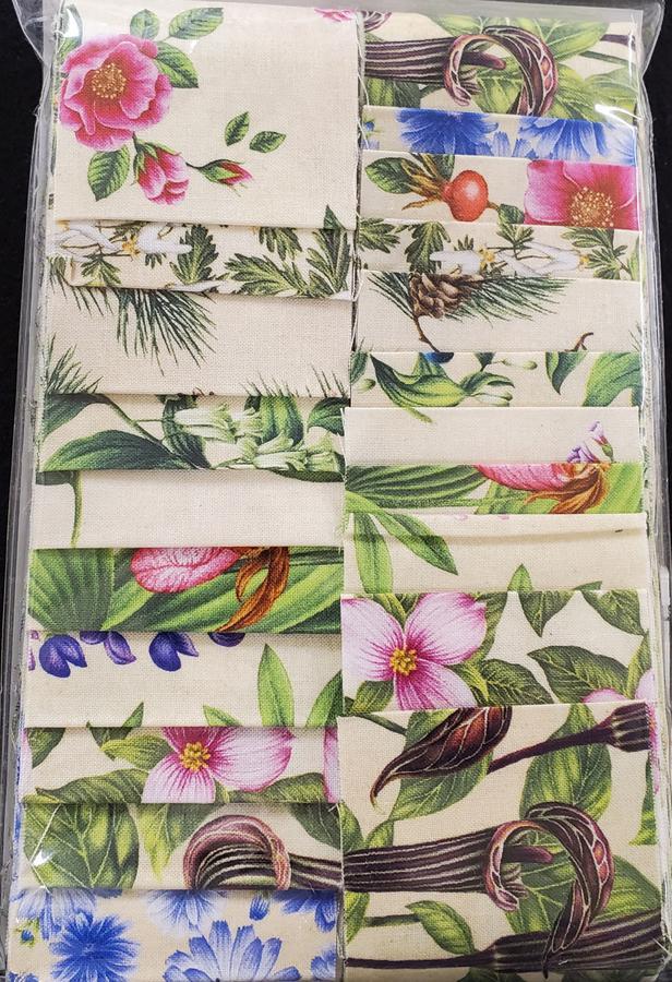 Maine Wildflowers 2.5 Strips