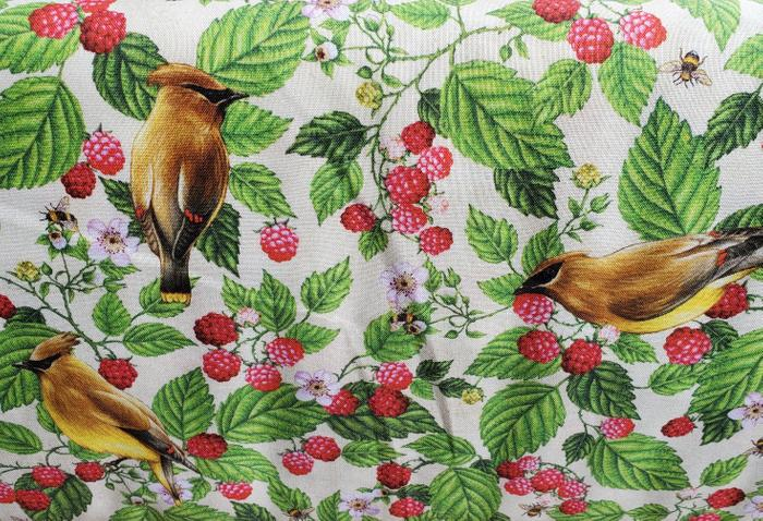 Maine Birds and Berries Cedar Waxwing and Wild Raspberry