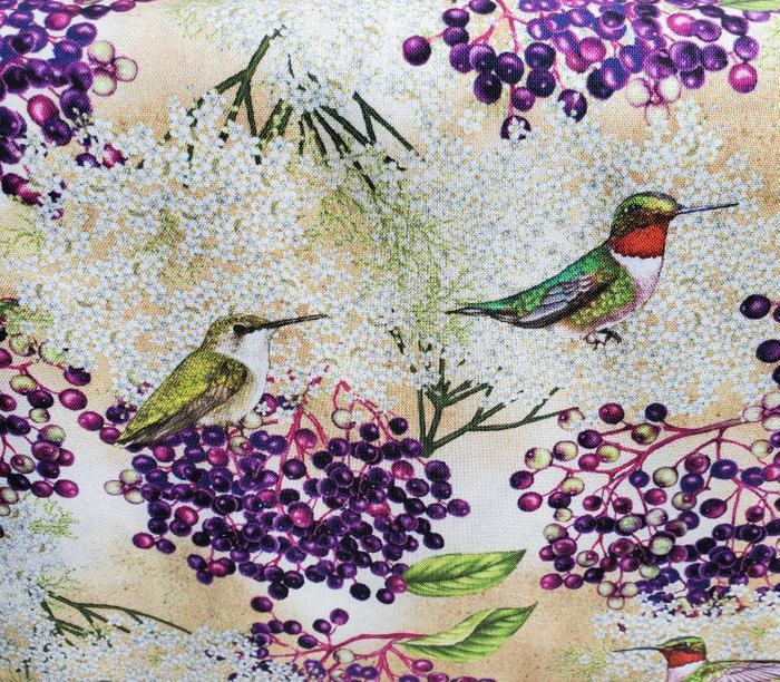 Maine Birds and Berries Hummingbird and Elderberry