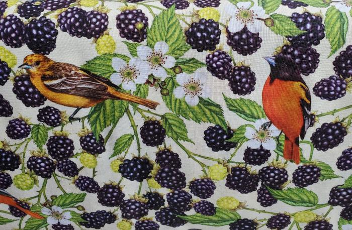 Maine Birds and Berries Oriole and Blackberry