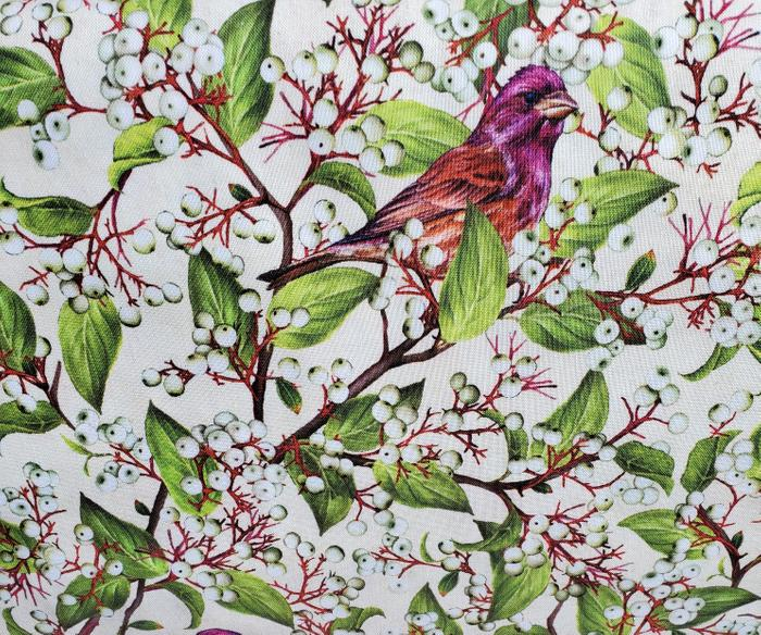 Maine Birds and Berries Purple Fitch and Dogwood