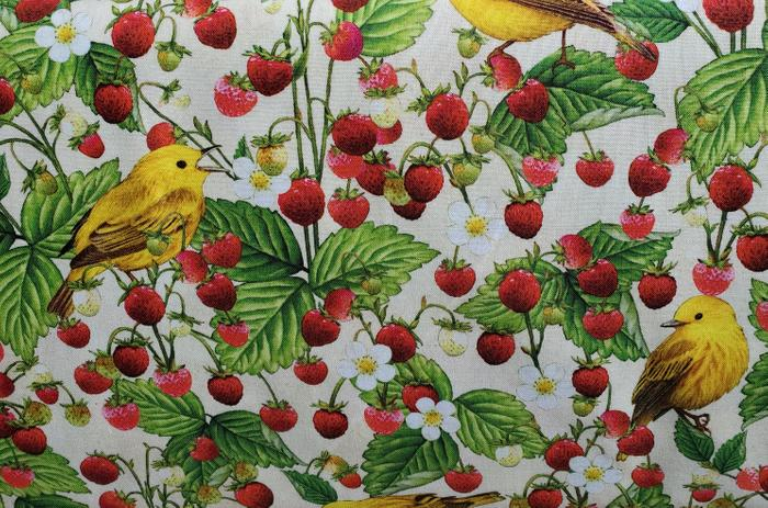 Maine Birds and Berries Yellow Warbler and Wild Strawberry