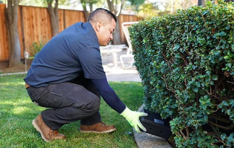 bay area rodent control specialist installing rodent station