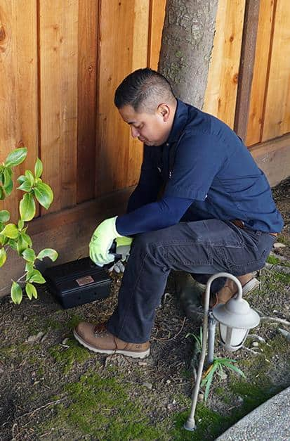 rodent control technician installing rodent bait station