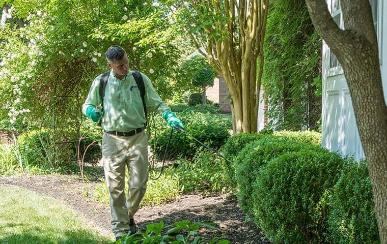 backyard pest treatment in nashville tn