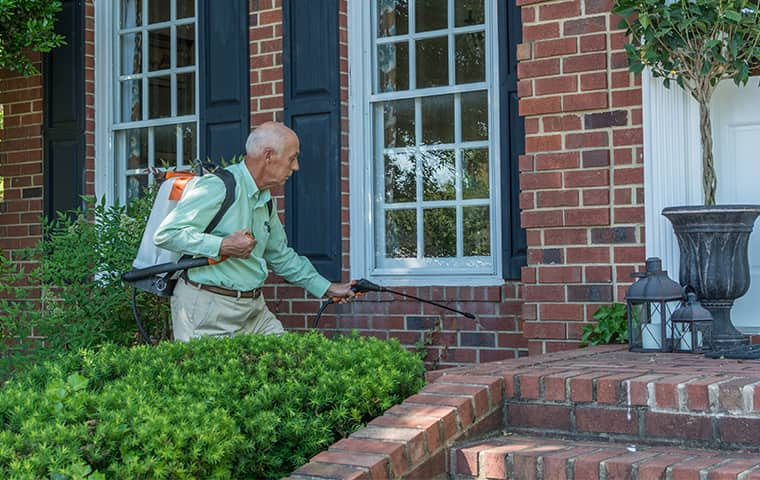 all american tech providing exterior home pest control services in belle meade tennessee