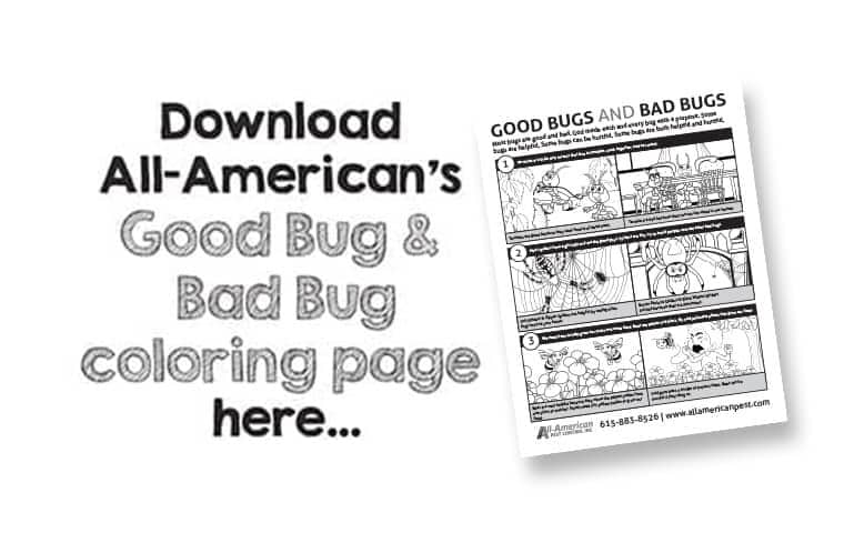 good bugs bad bugs color page
