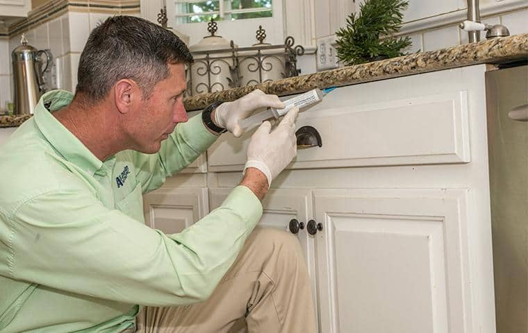 nashville pest control tech treating inside of home for bugs