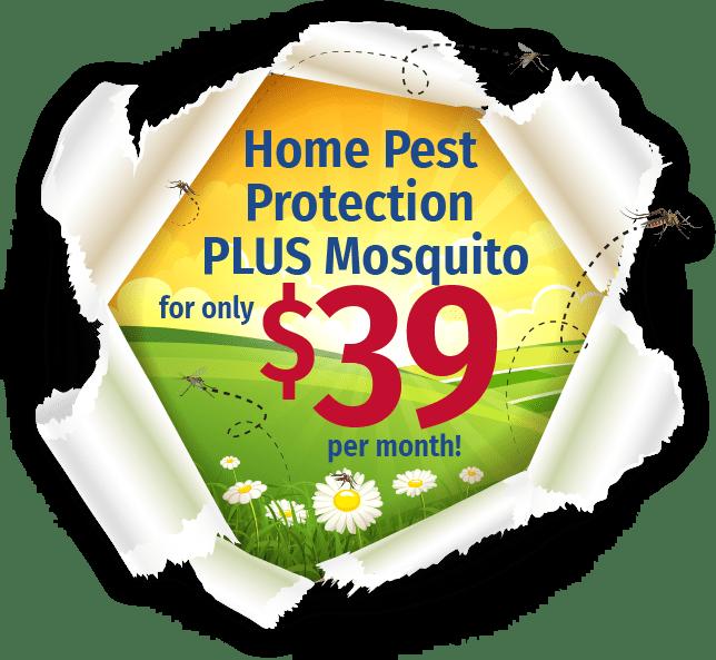 green pest control that's tough on nashville bugs