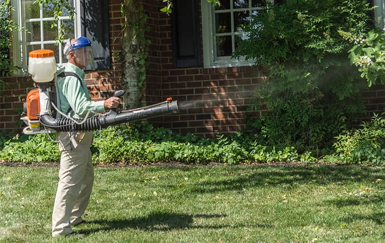all american tech providing mosquito control services in franklin tennessee