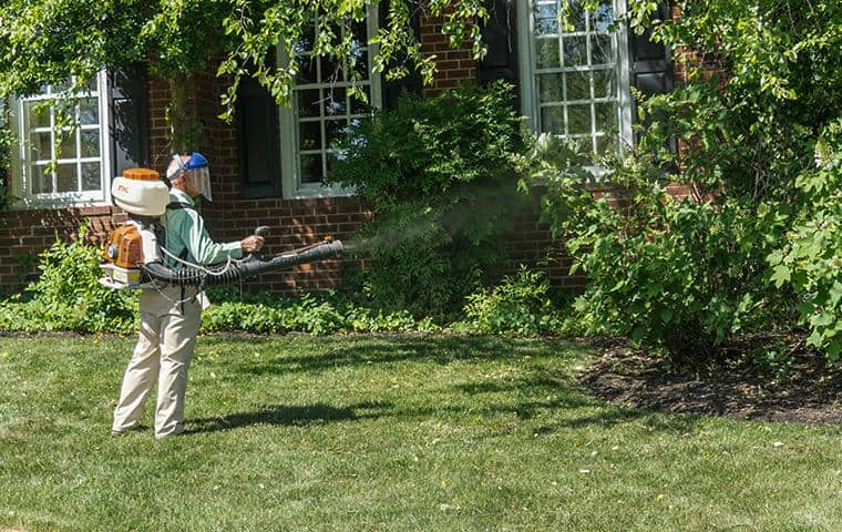 mosquito control expert treating nashville yard