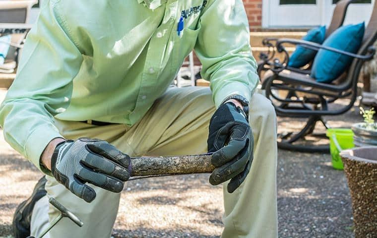 nashville termite control pro checking for activity