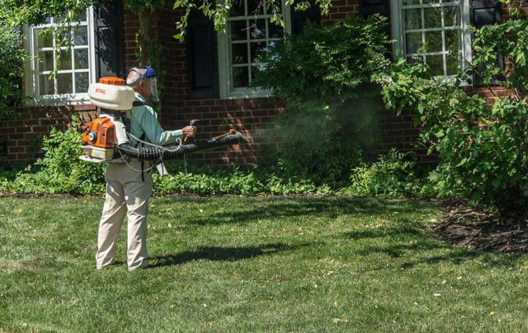 backyard pest treatment for mosquitoes, ticks and other outdoor pests in nashville