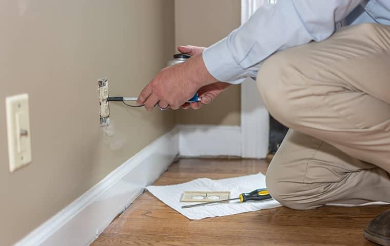 all american tech providing interior home pest control services in la vergne tennessee