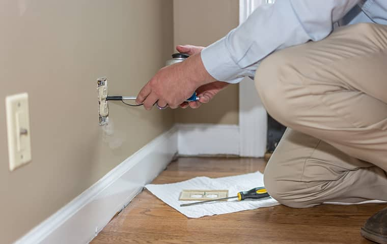 all american tech providing interior home pest control services in sylvan park tennessee