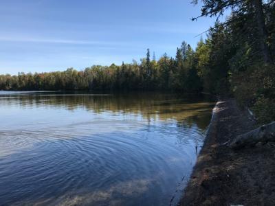 Loon Lake*